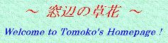 Tomoko's Homepage